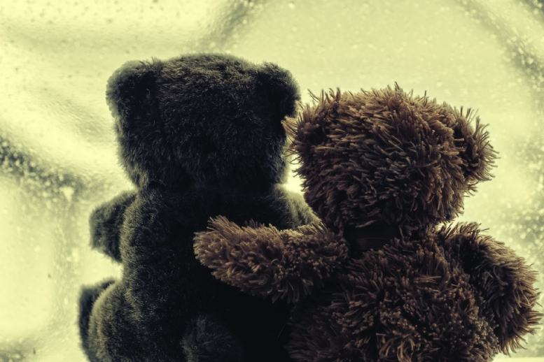 Two teddy bears embraced in a hug while looking out a window
