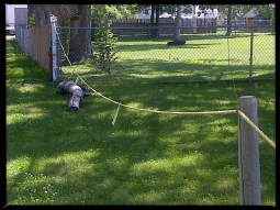 Elevated rope fence